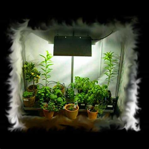 chambre de culture hydroponique l 39 or vert growshop culture hydroponique