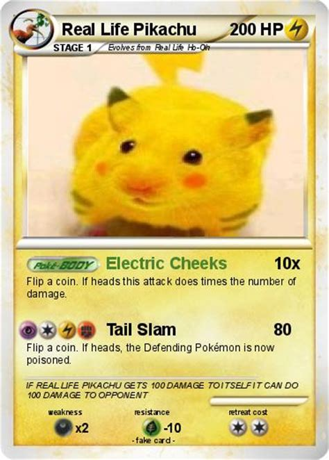 The Gallery For Real Life Pokemon Pikachu