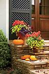Fall Container Gardening Ideas - Southern Living flower garden ideas and decorations