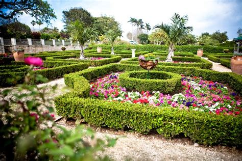 bermuda botanical gardens 17 best images about list things to do in