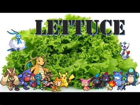 Pokemon Big Brother Simulator. With 100% MORE LETTUCE ...
