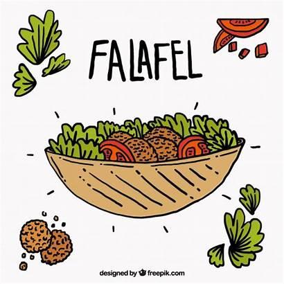 Falafel Ingredients Drawn Vector Hand Vectors Graphic