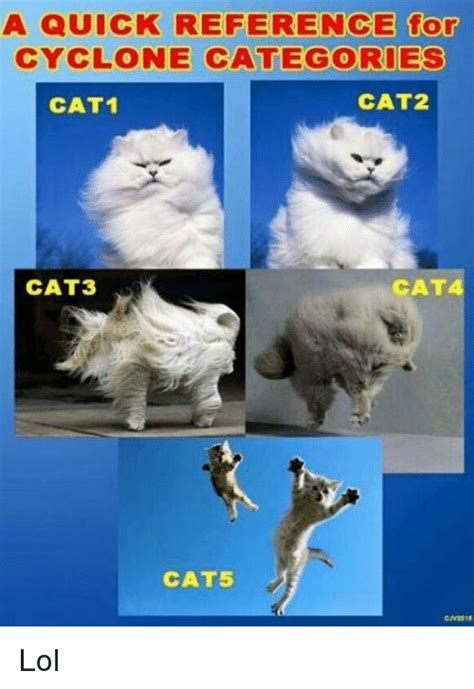 Meme Categories - a quick reference for cyclone categories cat2 cat1 cat3 cat cat5 lol meme on me me