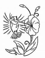Hummingbird Coloring Pages Cartoon Bird Hummingbirds Printable Humming Drawing Flower Easy Drawings Cute Kidsplaycolor Cliparts Animal Designs Clip Adult Play sketch template