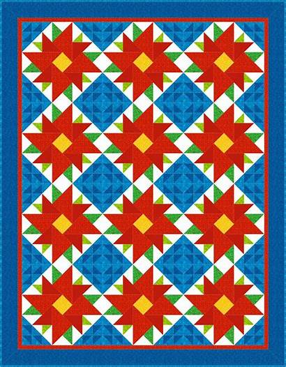 Quilt Barn Designs Pattern Quilting Contest Paint