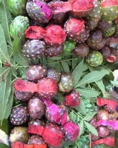 La Fruta Pitaya