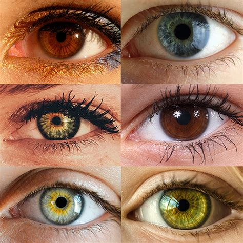 eye color eye color trivia worthington oh albright and schnulo