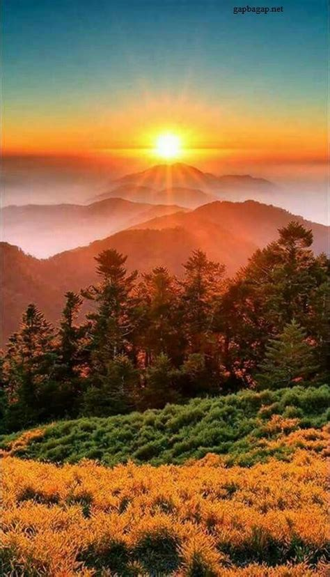 Beautiful Picture Of Sunset | Sunset nature, Scenery ...