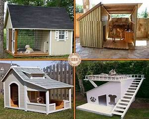 best dog houses the great outdoors pinterest With great dog houses