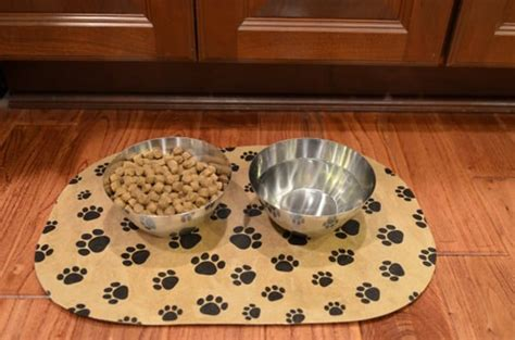 pet food mat diy pet food mat using a dollar placemat mod podge