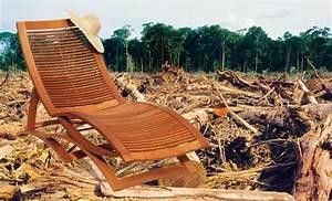 Möbel Aus Tropenholz : tropenholz zerst rt regenwald erfahre was du tun kannst abenteuer regenwald ~ Markanthonyermac.com Haus und Dekorationen