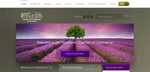 best design websites website design woodland ca