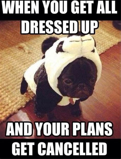 Www Memes Org - when you get all dressed up and your plans get cancelled