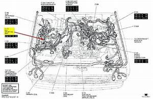 1999 Dodge Durango Engine Diagram