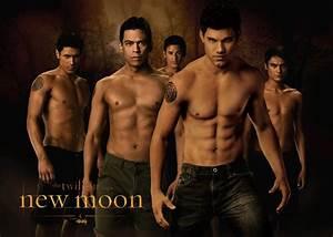 Image - New-moon-wolf-pack-wallpaper-jacob-black-1024x730 ...