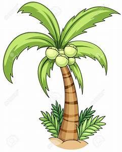 Drawing Of Coconut Tree | www.imgkid.com - The Image Kid ...