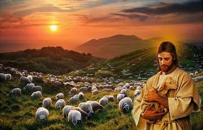 Jesus Christ Wallpapers Shepherd Desktop Background