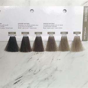 06na Granite Google Search Balayage Asian Hair Ash