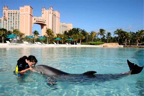 Dolphin Dream Boat Bahamas by Bahamas Breathtaking Earth Paradise Travel All Together
