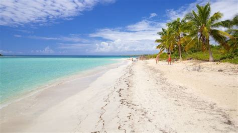 vieques island vacations package save up to 583 expedia