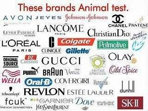 CrueltyFree Makeup These Brands DONT Test on Animals  PETA