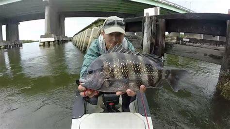 fishing under bridges eddies