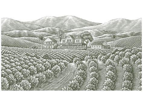 steven noble illustrations coffee plantation