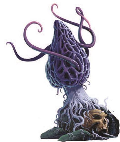 Violet Fungus » Dungeons & Dragons - D&D 5