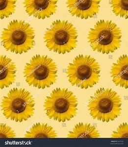 Sunflower Wallpaper Stock Photo 3822196 - Shutterstock