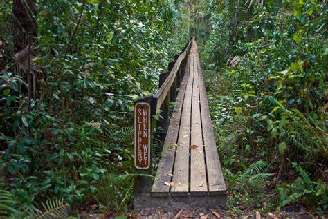 Hammock Trails highlands hammock nature trails florida hikes
