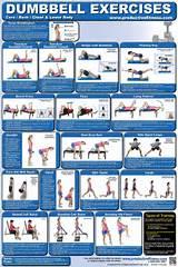 Upper Body Workout: Dumbbell Upper Body Workout Pdf