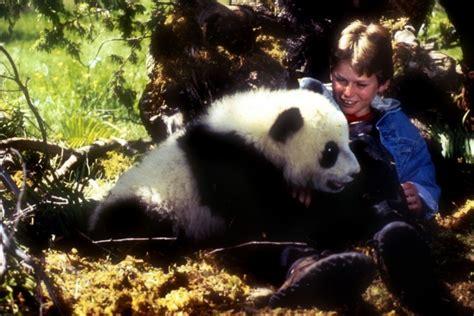 amazing panda adventure  starring ryan