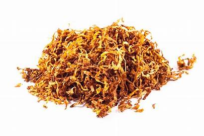 Tobacco Gold Kendal Vanilla Virginia Loose Shag