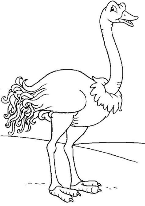 smiling ostrich coloring page color luna