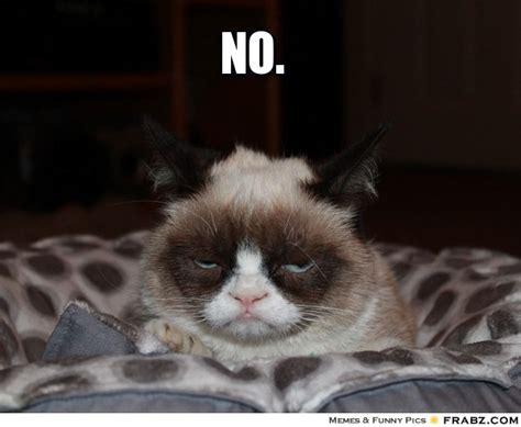 Cat Meme Generator - evil cat meme generator image memes at relatably com