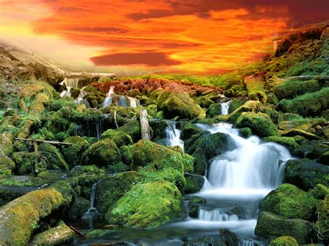 Animated Nature Wallpaper Desktop Gif - nature animated gif wallpaper www imgkid the image