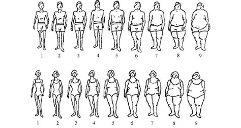 The Stunkard Scale Of Gender-specific Body-shape