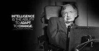 20 Insightful Stephen Hawking Quotes That Reveal Life's ...