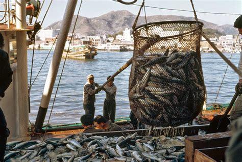 Fishing Boat Jobs Reddit by Next Big Future Fishing Provides Key Jobs And Nutrients