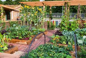 Vegetable fruit flower garden with crayon fence plant for Beautiful home vegetable gardens
