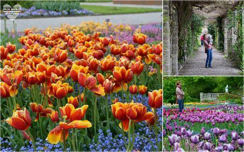 Botanischer Garten München Kinder by 10 Top Outdoor Aktivit 228 Ten Mit Kindern In M 252 Nchen Und