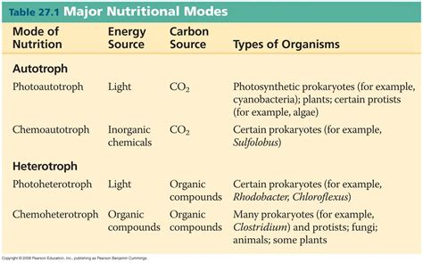 an organism able to form nutritional organic substances exam 2 biology 112 with welsh at duquesne university