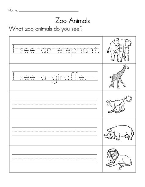 images  zoo tracing worksheets baby animal