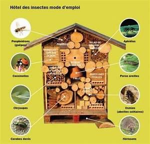 Nichoir A Insecte : h tel insectes une collection d 39 id es sur autre ~ Premium-room.com Idées de Décoration