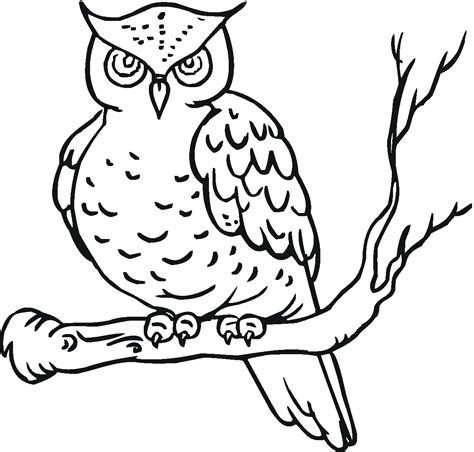 Coloring Owl by Owl Coloring Pages Kidsuki