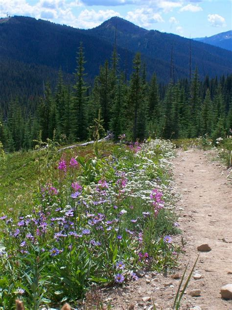 manning provincial park travel guide  wikivoyage