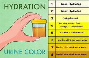 Stool Odor Chart Top 13 Benefits Of Drinking Water
