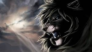 Black Lion HD Wallpaper - WallpaperSafari