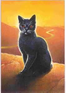 Warrior Cats Stormfur