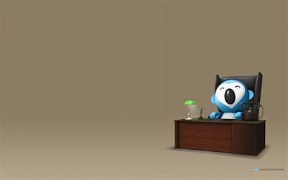 Business Wallpapers Desktop Koala Office Background Pc